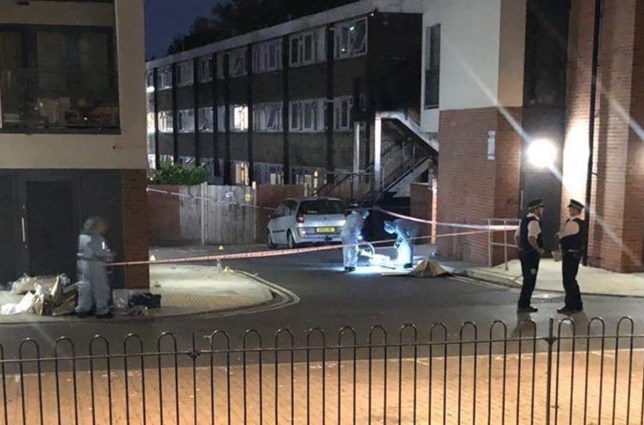 (Picture: @999London) A man in his 20s has died in hospital after he was stabbed in broad daylight in south east London, the Metropolitan Police has said. Officers were called to reports of a stabbing at Tellson Avenue, Kidbrooke, at 2.40pm yesterday. The victim, believed to be in his early 20s, was found by police and London Ambulance Service with a number of stab wounds. He was taken to hospital in south London but died just hours later, shortly before 8.35pm.