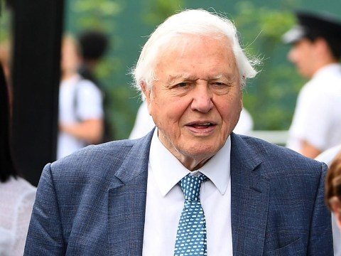 David Attenborough praises young people for their action on climate change