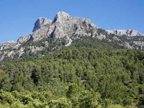 Body of missing British hiker found at bottom of Majorca mountains