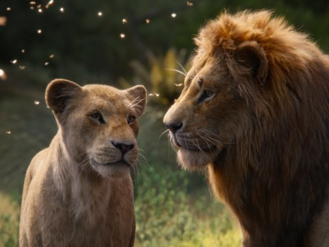 Is the new Lion King a musical and will there be new songs in the soundtrack?
