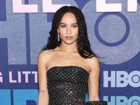 What has new Catwoman star Zoe Kravitz been in and how is she related to Jason Momoa?