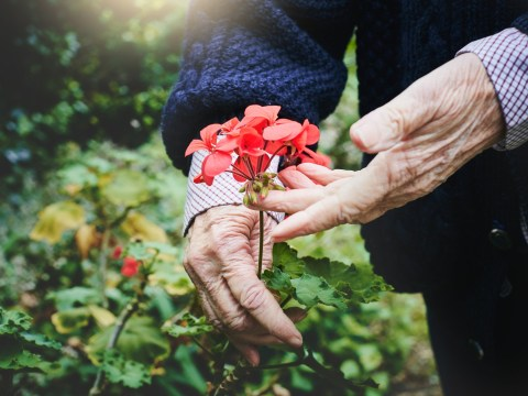 Six ways to help your elderly neighbours during the heatwave