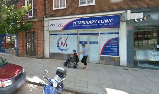 Medivet???s north London???s veterinary team are urging pet owners to be highly vigilant during this week???s high temperatures after a dog was left fighting for its life from severe heatstroke. Provider: Google Map