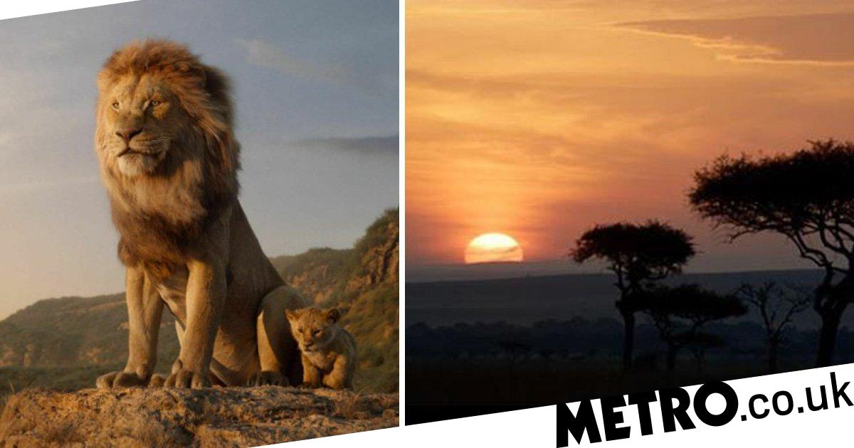 The Lion King Director Jon Favreau Shares One Real Shot In