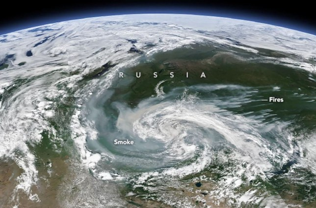 Wildfires are burning in 11 regions across the Russian Arctic.