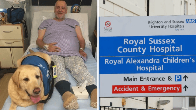 Blind man told he can't bring guide dog to life-saving hospital appointments