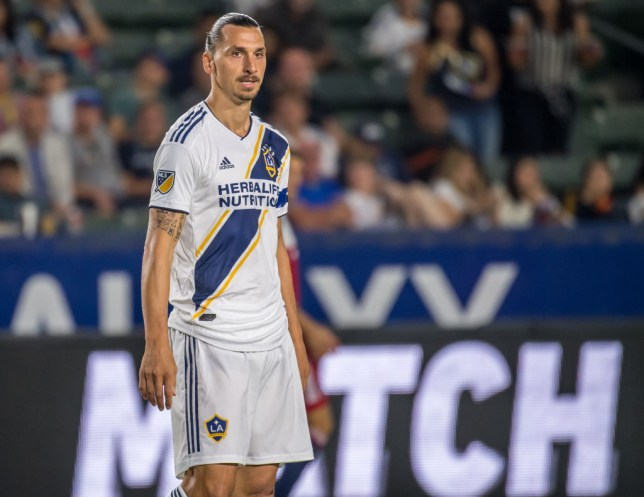 Zlatan Ibrahimovic believes Cristian Pavon should move to Europe (Picture: Getty)