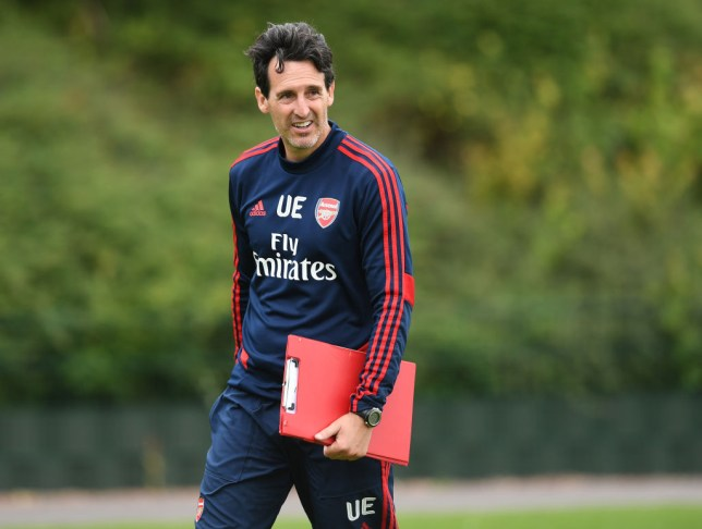Unai Emery made a surprising admission about his squad (Picture: Getty)