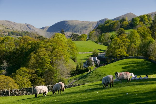 Spring in Troutbeck Valley with the Kentmere Fells beyond, in the scenic Lake District