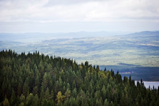 Everything you need to know about Sweden's Värmland (and why you need to visit)