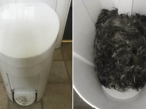Man discovers new flatmate is making 'creepy' pillow out of human hair