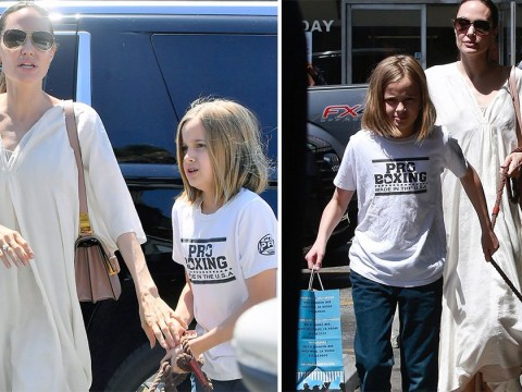 Angelina Jolie continues to run all the errands as she takes daughter Vivienne and adorable pooch to pet store