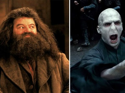 Bizarre Harry Potter theory suggests Hagrid was a Death Eater this whole time and we are not okay about this
