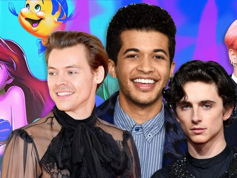 Who is going to be Prince Eric in The Little Mermaid live action remake now Harry Styles has turned it down?