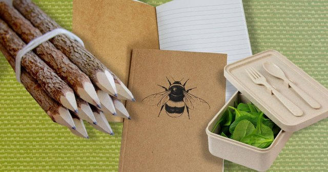 Wooden pens, a recyclable notebook and a lunch box on a green background