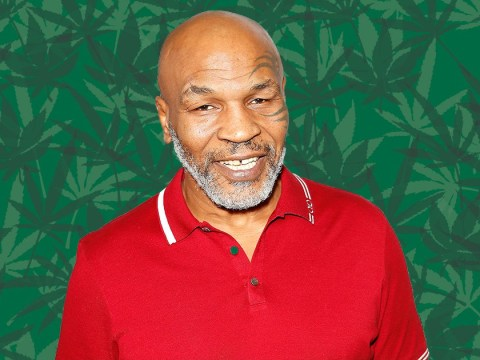 Mike Tyson spends $40,000 a month on weed after buying marijuana ranch