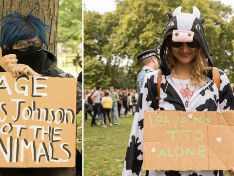Record 12,000 vegan activists take part in London Animal Rights March