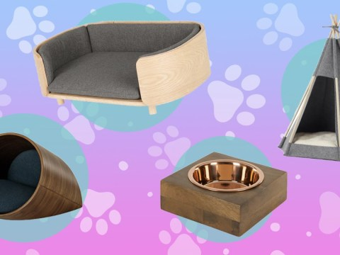 Put some time aside, there's a homeware section for cats and dogs on Made