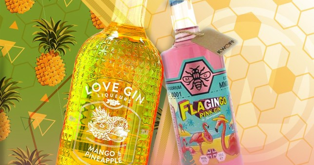 Two gin brands (Flagingo and Love Gin Liqueurs) served at Wetherspoons, placed on a colourful patterned background