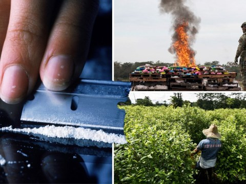 Judge in Mexico gives green light to recreational cocaine use