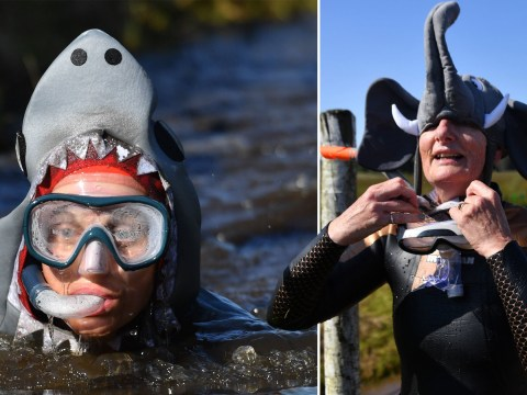 Hundreds swim through murky water at World Bog Snorkelling Championship
