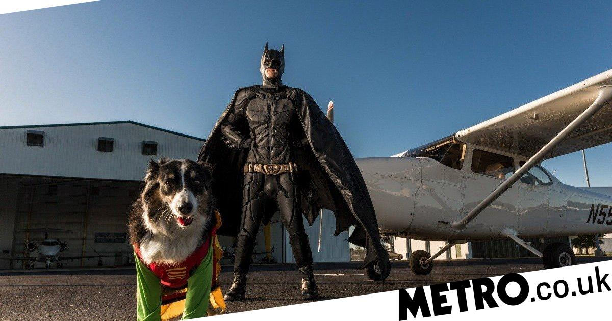 Pilot dresses up as Batman to fly rescue animals to their forever homes
