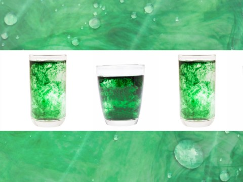 What is chlorophyll water and why is everybody talking about it?