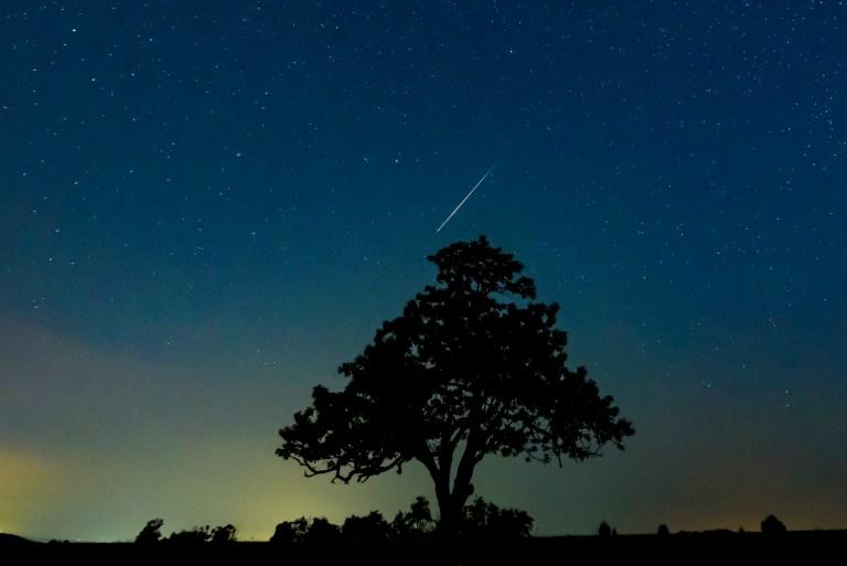 Perseid meteor shower caused by comet lights up skies across