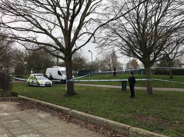 Pictured: Police at Stamshaw Park, Portsmouth, after the alleged stabbing. A police officer was left with horrific injuries after he was stabbed in the back 'several times' by a drug dealer while carrying out a stop and search in a children's park, a court heard today. PC Russell Turner, 56, suffered a punctured lung and was rushed to hospital after Michael Enzanga, 20, allegedly overpowered him during a struggle and repeatedly plunged a kitchen knife into his back. Enzanga is accused of dealing heroin and cocaine when he was approached by PC Turner and his colleague PC Claire Parry, who were wearing plain clothes as part of an undercover drugs operation. Jurors heard today Enzanga, 19 at the time, did not comply with the stop and search and a struggle ensued before he allegedly stabbed PC Turner, who had served Hampshire Constabulary for 14 years. SEE OUR COPY FOR MORE DETAILS. ? Portsmouth News/Solent News & Photo Agency UK +44 (0) 2380 458800