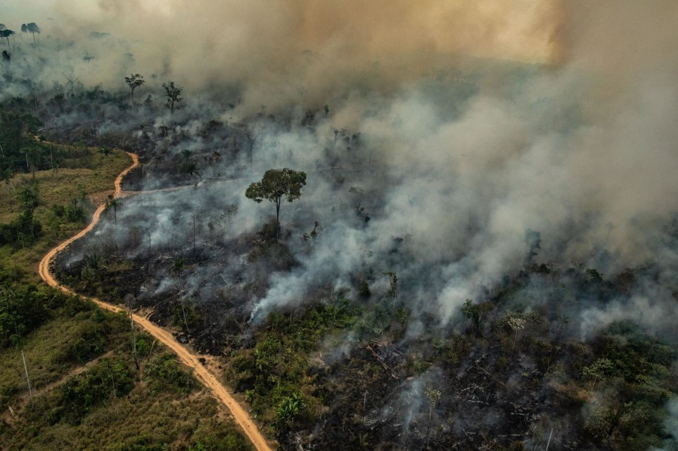 "Handout aerial picture released by Greenpeace showing smoke billowing from fires in the forest in the Amazon biome in the municipality of Altamira, Para State, Brazil, on August 23, 2019. - Hundreds of new fires are raging in the Amazon rainforest in northern Brazil, official data showed on August 24, 2019, amid growing international pressure on President Jair Bolsonaro to put out the worst blazes in years. The fires in the world's largest rainforest have triggered a global outcry and are dominating the G7 meeting in Biarritz in southern France. (Photo by Victor MORIYAMA / GREENPEACE / AFP) / RESTRICTED TO EDITORIAL USE - MANDATORY CREDIT ""AFP PHOTO / GREENPEACE / VICTOR MORIYAMA"" - NO MARKETING - NO ADVERTISING CAMPAIGNS - DISTRIBUTED AS A SERVICE TO CLIENTSVICTOR MORIYAMA/AFP/Getty Images"