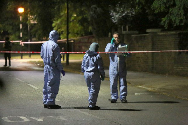 Murder victim in his 60s begged for wife as he lay bleeding