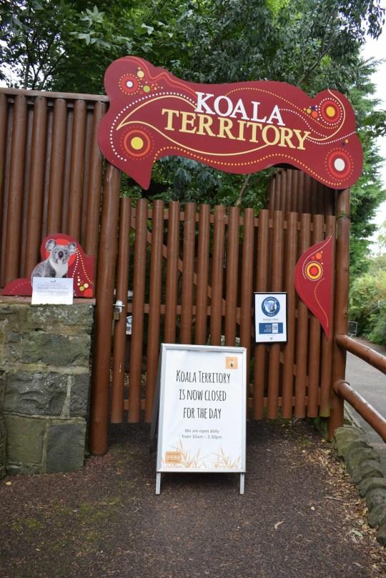 EDINBURGH Zoo's koala enclosure