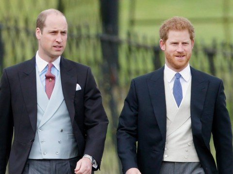 What did Prince Harry say about his relationship with his brother Prince William?