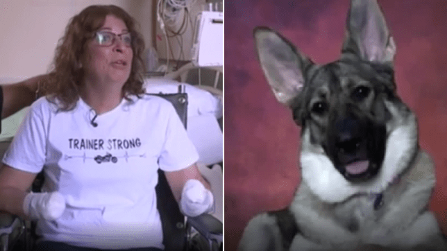 Photo of Marie Trainer next to photo of her pet dog who licked her arm and gave her serious infection