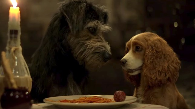 Lady And The Tramp remake spaghetti and meatball scene