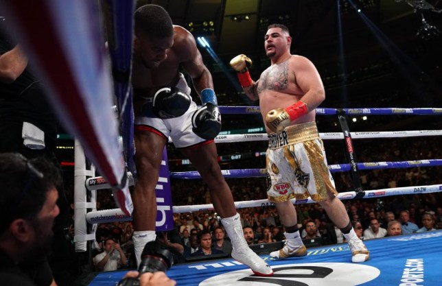 USA's Andy Ruiz (R) fights with England's Anthony Joshua (L) during their 12-round IBF, WBA, WBO & IBO World Heavyweight Championship fight at Madison Square Garden in New York on June 1, 2019. (Photo by TIMOTHY A. CLARY / AFP) (Photo credit should read TIMOTHY A. CLARY/AFP/Getty Images)