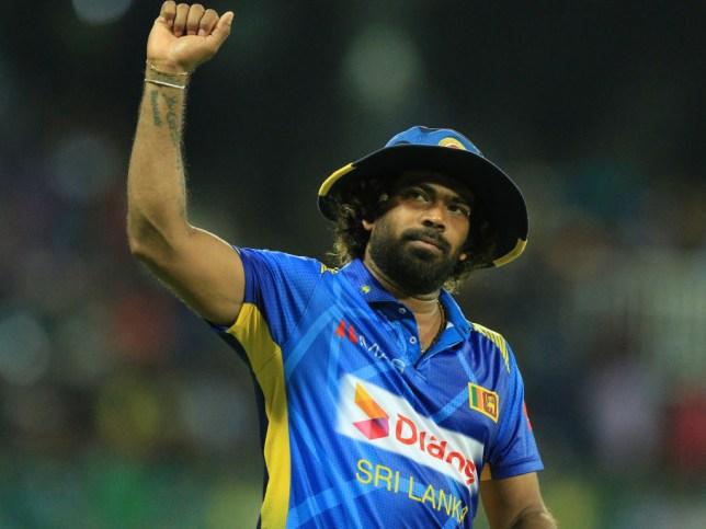 Sri Lanka legend Lasith Malinga ripped through New Zealand
