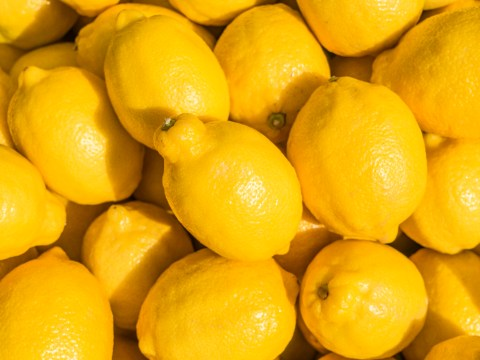 Adding a slice of lemon to your drink might mean it's not vegan