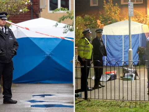 Mum saw paramedic weeping after trying to save stabbed boy, 15, for over an hour
