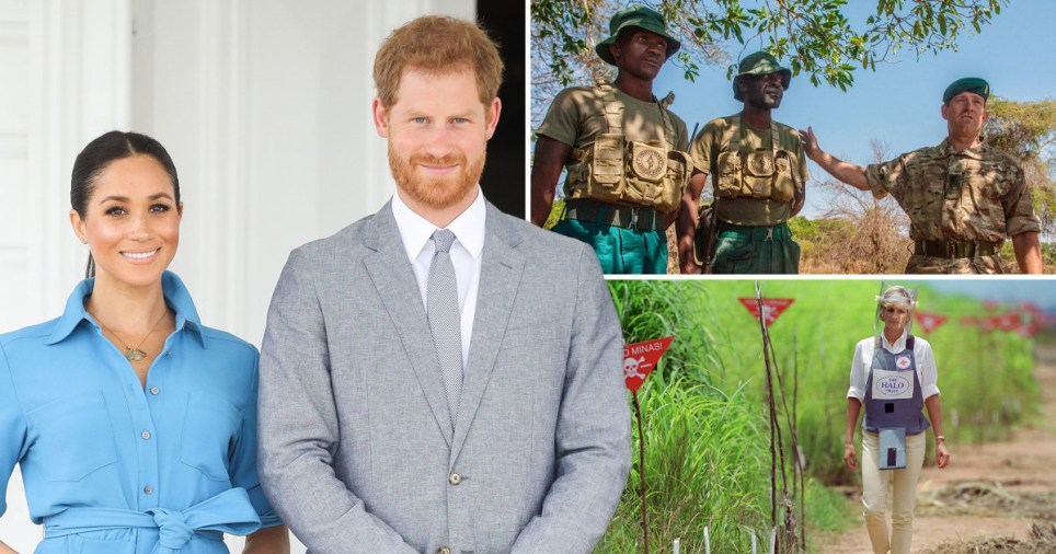 Harry and Meghan reveal Africa tour details including visit to Diana landmine site