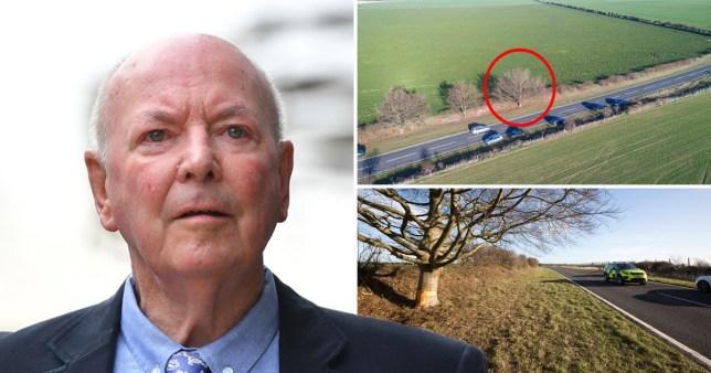 'Paedophile' football coach killed himself by deliberately crashing into tree