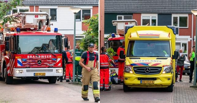 Dordrecht shooting