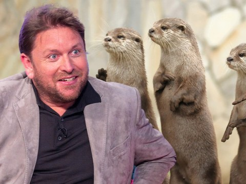 James Martin 'identifies as an otter' as he kicks off over Fireman Sam controversy