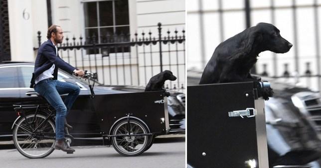James Middleton riding dog bike