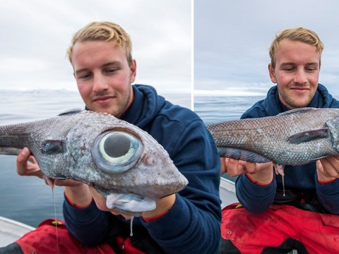 Fisherman catches creature with 'head of lion and tail of dragon'