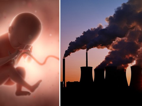 Study finds carbon particles from air pollution in the placentas of pregnant women