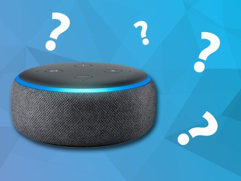 Nine things to ask Alexa in the morning to set you up for your day