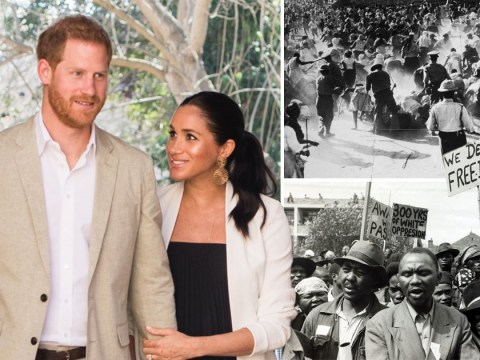 Prince Harry urged to apologise for apartheid in South Africa