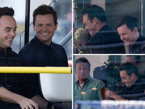 Ant and Dec back to their best as they leave worries behind with Jamie Oliver at the beach