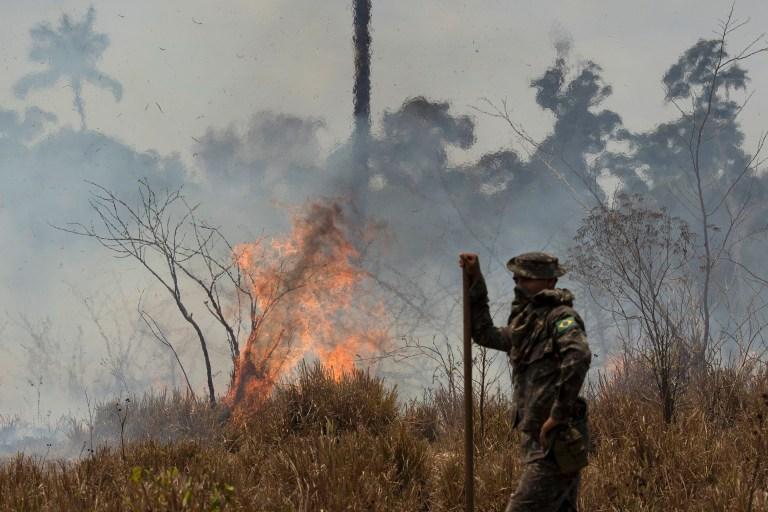 Amazon rainforest still burning despite ban from Brazil